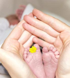 Formulación de cosmética natural infantil para la piel