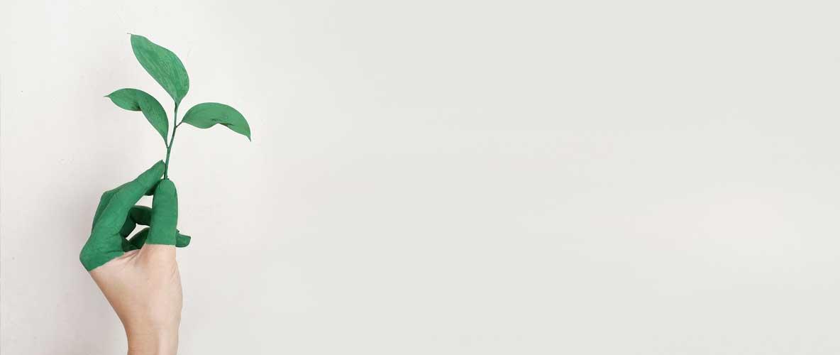 """""""Greenwashing"""" o cómo tu empresa de cosmética favorita pretende ser verde"""