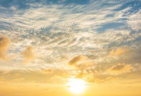 Fototoxicidad y fotoalergia en cosmética natural