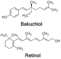 Bakuchiol_fórmula