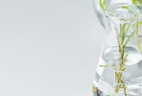 ISO 16128 sobre cosmética natural: ¿qué contiene?