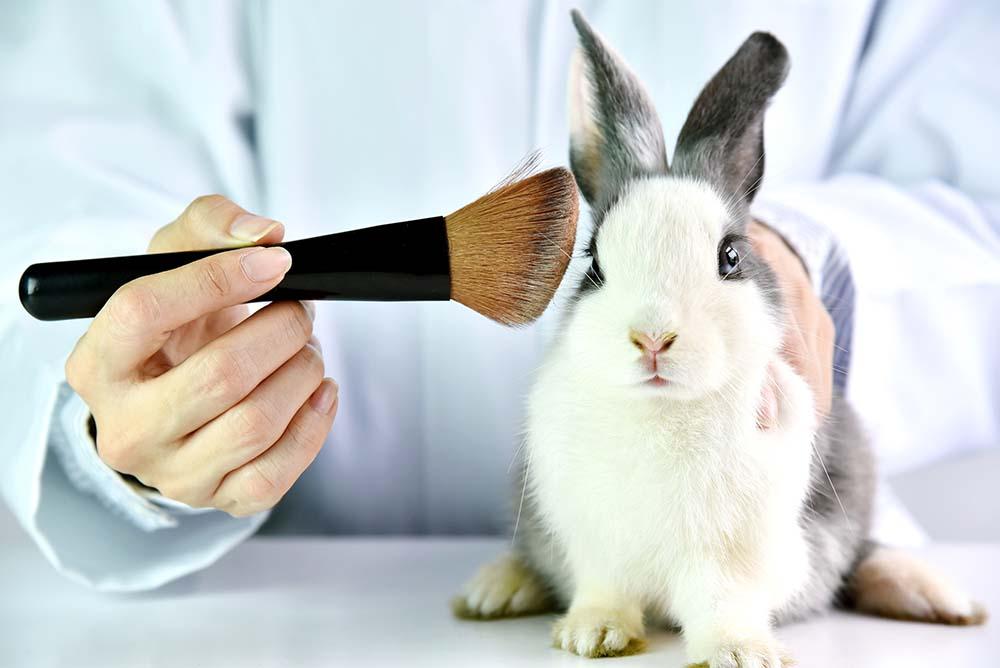 cosmetica cruelty free